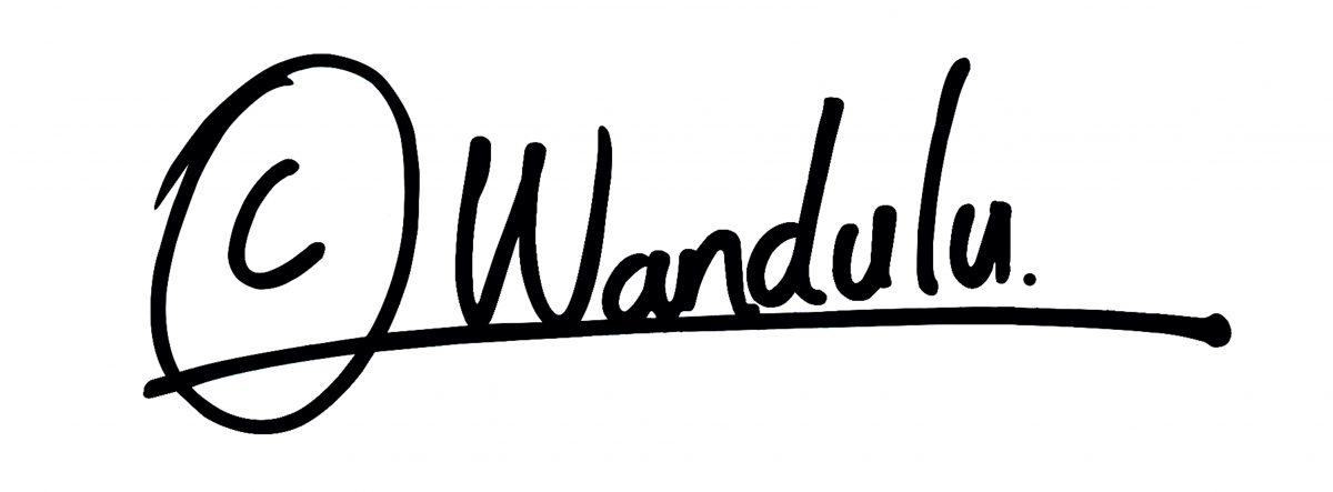 Wandulu Timothy